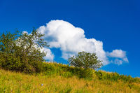 prairie landscape and sky