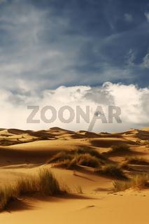 Dunes of Sahara Desert , Morocco