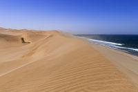 Sandstorm on the Skeleton Coast, dunes to the Atlantic Ocean, Namib Desert, Namibia, Africa.