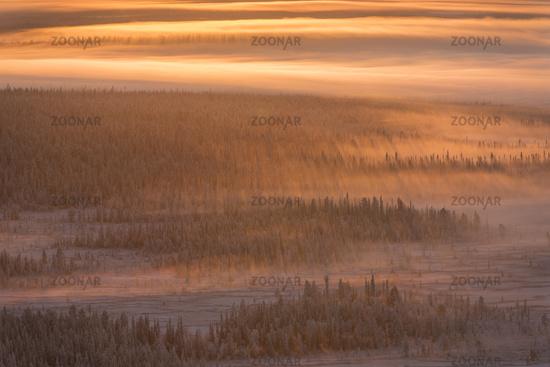 foggy mood, Lapland, Sweden
