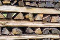 Wood logs prepared to dry