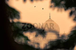 The dome of the Taj Mahal in Agra, India on overcast day with smog