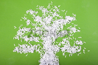 tree symbol concept