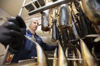 September 18, 2020. Belarus, Gamil. Fish factory.A worker pushes a smoked fish cart into an industrial oven.