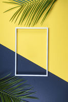 Summer composition with photo frame and green leaves on yellow background