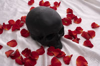 Skull lying in red rose petals - love and death concept