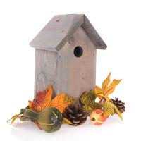 Birdhouse isolated