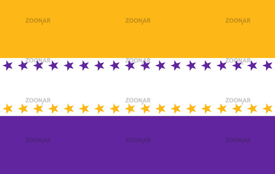 Nineteenth Amendment flag