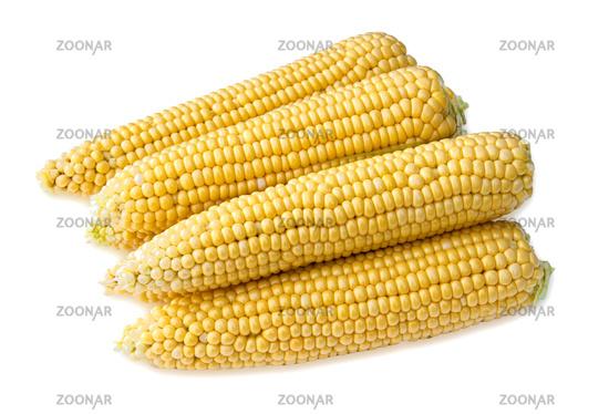 Four ears of corn