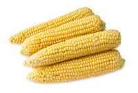 Four ears of corn