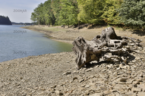 Drought, water shortage