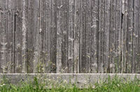 Natural grey barn wood wall with grass flower meadow foreground. Wall texture background pattern.