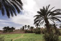 Adobe buildings in M'Hamid El Ghizlane.