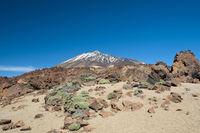 Pico de Teide, 3718m, Tenerife, Canary Islands, Spain, Europe