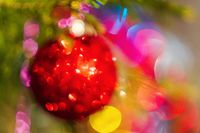 Defocused red Christmas ball hanging on branch of pine tree. Out of focus festive textured effect