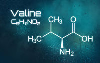 Chemical formula of Valine on a futuristic background