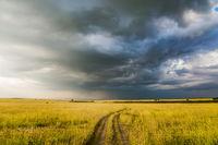 Storm clouds over Masai Mara Reserve
