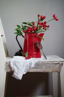 still life with rose hips