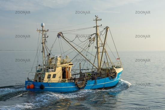 Fishing boat on the North Sea off the coast of Buesum, North Sea coast, Schleswig-Holstein, Germany