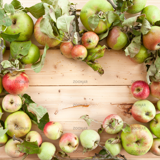 Organic apples background