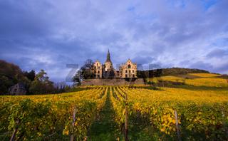 Schloss und   Weinreben im Herbstlicht