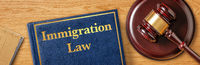 A gavel with a law book - Immigration Law