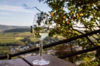 Glas of white wine and landscape in background
