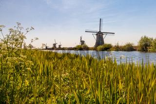 Die Mühlen von Kinderdijk
