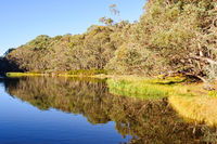 Lake Catani - Mount Buffalo