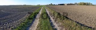 Panorama mit Feldweg zwischen frisch bearbeitem Acker mit Traktorspuren