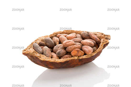 Unpeeled cocoa beans in a pod on white background.