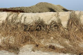Zerstörte Dünen nach einem Orkan