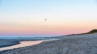 Beach section