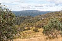 Autumn view - Mt Buller