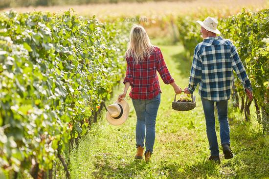 Glückliches Paar auf einem Ausflug im Weinberg