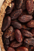 Detail of fresh peeled cocoa beans in a pot from above.