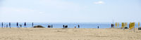 sandy bathing beach with walking people