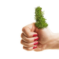 Woman holding her green thumbs up isolated on white background. Planting, gardening and environmenta
