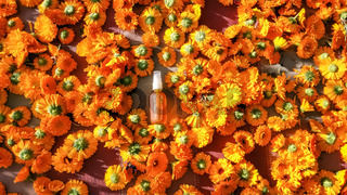 Bright calendula flowers around bottled oil