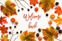 Bright Colorful Autumn Leaf Decoration, English Text Welcome Back