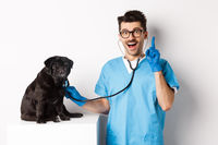 Excited male doctor veterinarian having an idea while examining cute pug dog with stethoscope, raising finger in eureka sign, white background