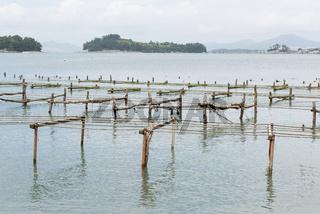 Leere Gestelle für Austernfarm in Südkorea