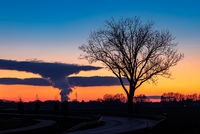 Tree at dusk in front of phantastic steam clouds of a power plant