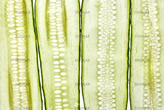Vertical cut cucumber vegetable slices natural background.