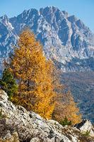Autumn Dolomites mountain rocky view, Sudtirol, Italy