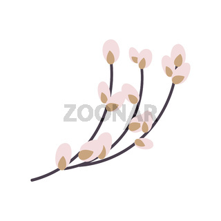 Willow twig isolated on a white background. Easter willow.Flat vector illustration. Design for Easter, packaging