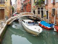 Nail Bridge - Venice