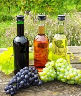 Weinflaschen mit Weintrauben