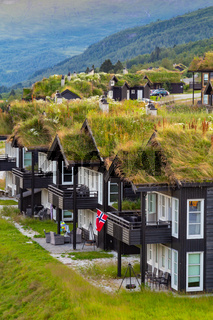 Traditional summer houses with natural green roofs