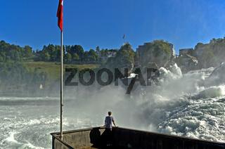 Der Rheinfall zur Zeit der Schneeschmelze in den Alpen